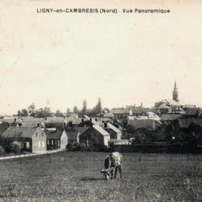 Ligny-en-Cambrésis (59)