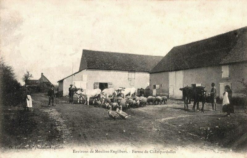 Limanton (Nièvre) Champardolles, la ferme CPA