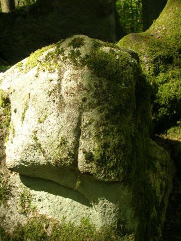 Luzy (Nièvre) Roches gravées du Mont Dosne