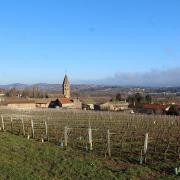 Mâcon (71) Loché