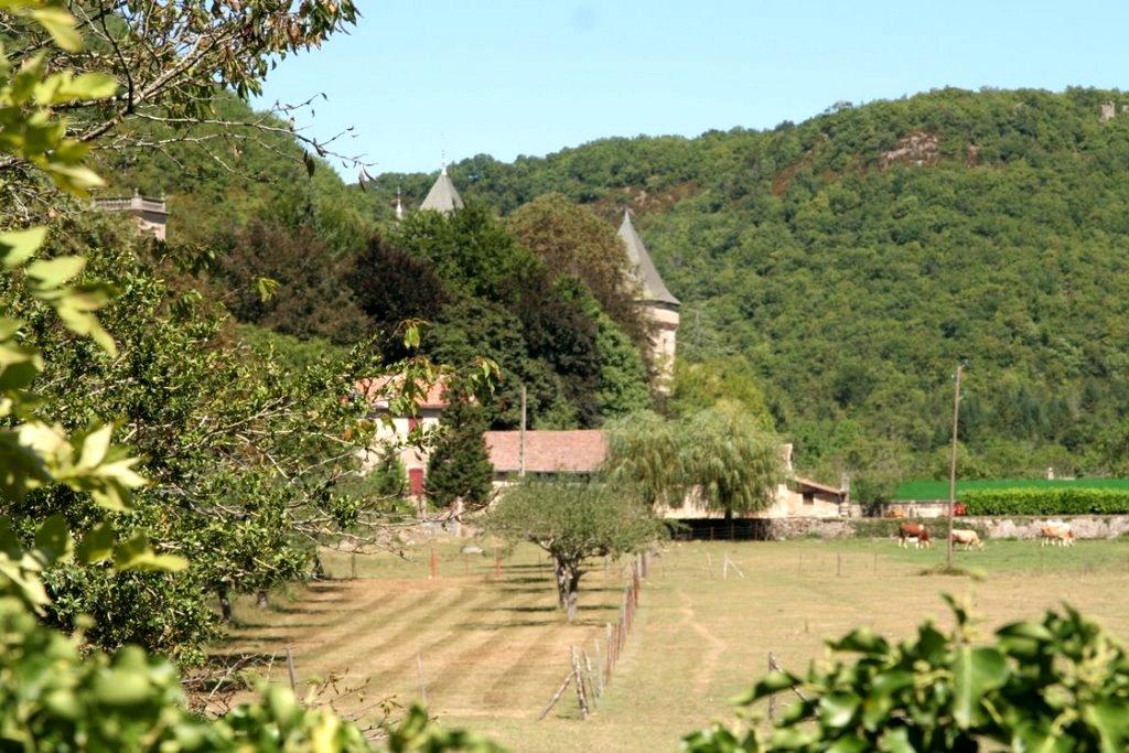Marnhagues-et-Latour (Aveyron) Nonenque, chartreuse