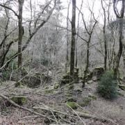 Mélagues (Aveyron) Proudoumat, les ruines