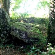 Montmirail (51) Les vestiges du dolmen du Trou du Boeuf
