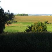 Neuville bosc oise l eglise autour