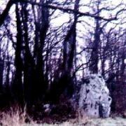 Neuville bosc oise menhir de la pierre aux coqs