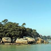 Noirmoutier-en-l'Ile (Vendée) Bois de la Chaise, le rivage