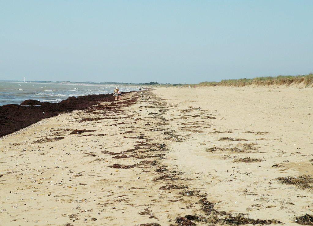 Notre-Dame-de-Monts (Vendée) La plage de la Braie