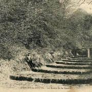 Pargny-la-Dhuys (Aisne) CPA le ravin des sources