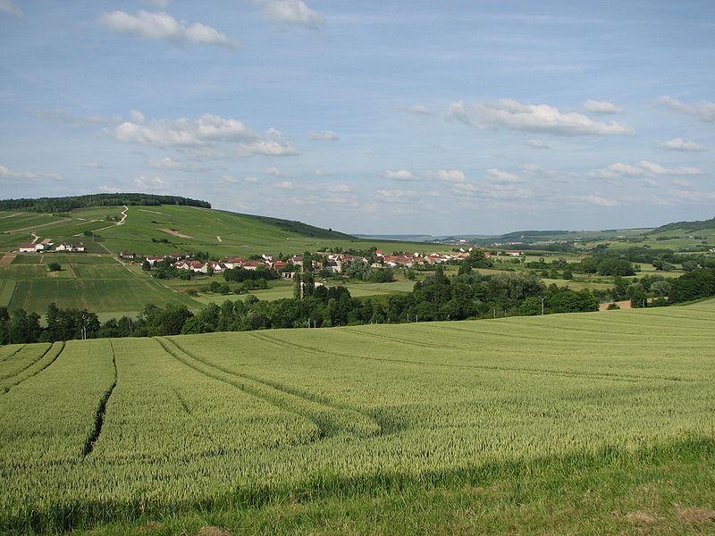 Passy-sur-Marne (Aisne) vue générale