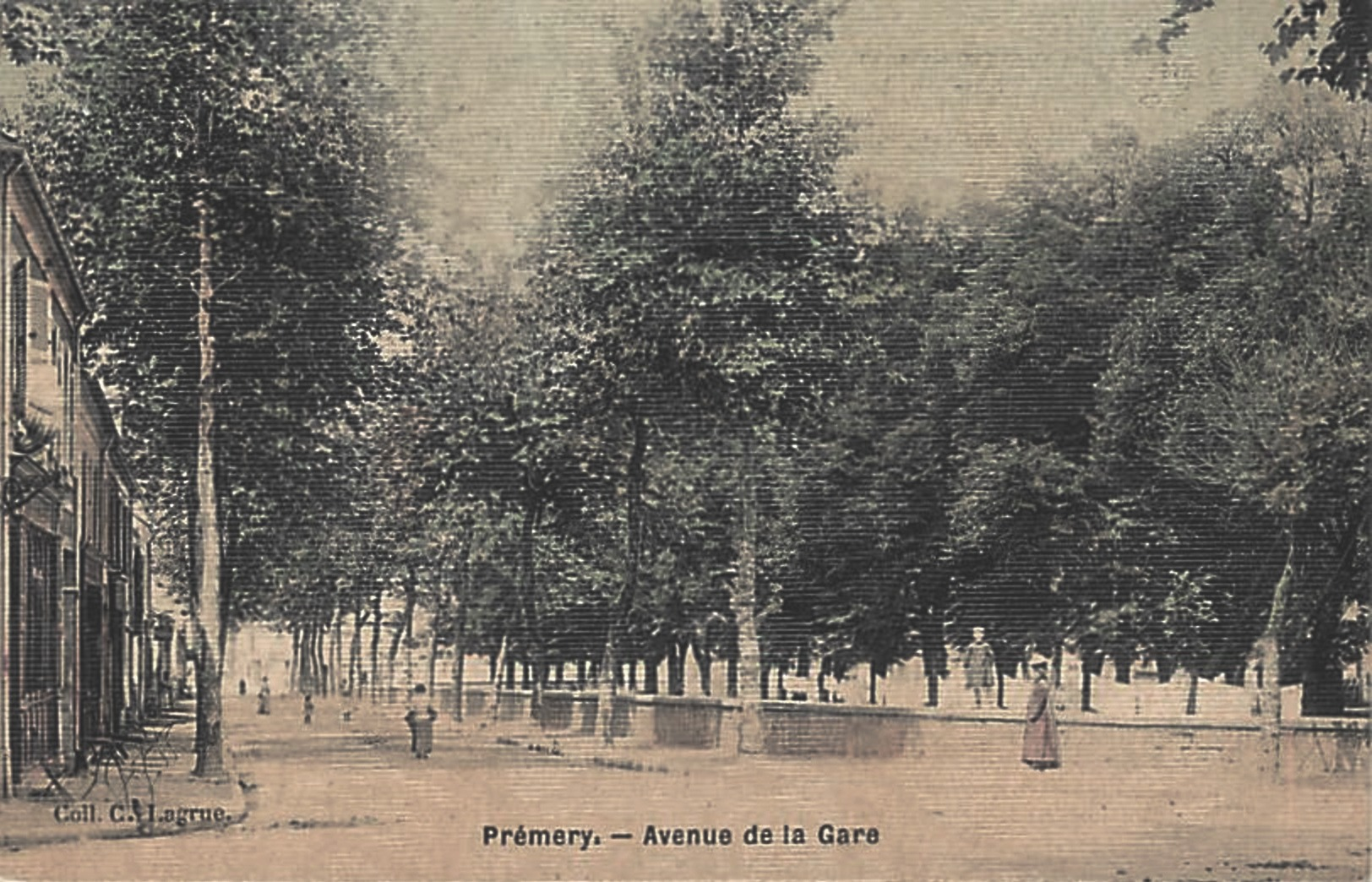 Prémery (Nièvre) L'avenue de la Gare CPA