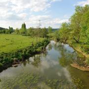 Quincy-Landzécourt (Meuse) Les bords de Meuse
