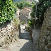 Saint-Affrique (Aveyron) Vendeloves