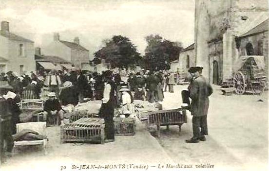 Saint-Jean-de-Monts (Vendée) Le marché aux volailles CPA