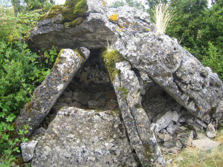 Saint-Jean-et-Saint-Paul (Aveyron) Dolmen de la Treille
