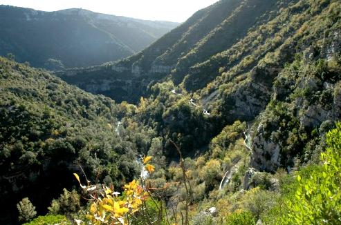 Saint-Maurice-Navacelles (Hérault) Les gorges de la Vis