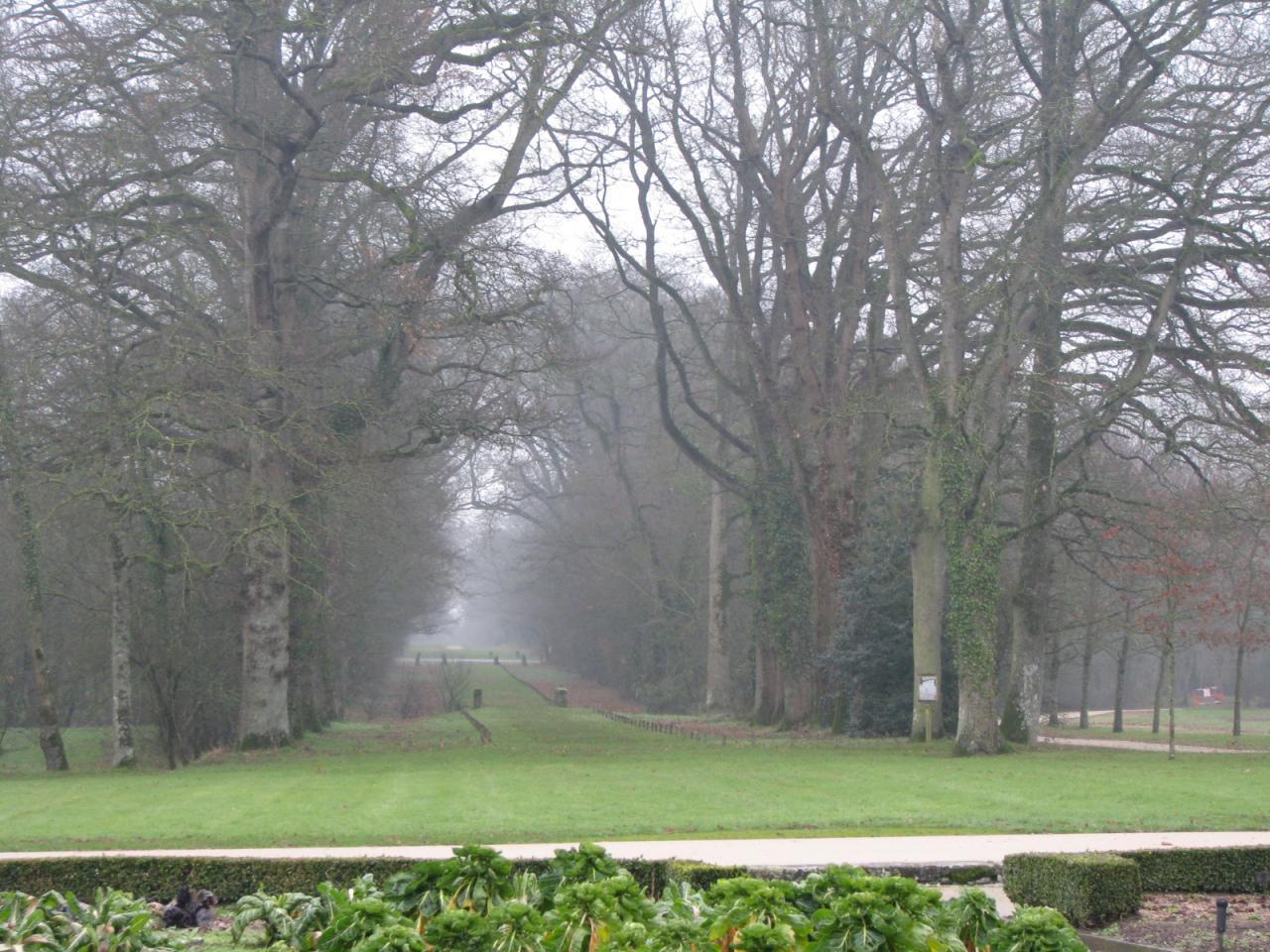 Saint-Sulpice-le-Verdon Logis de la Chabotterie (33)
