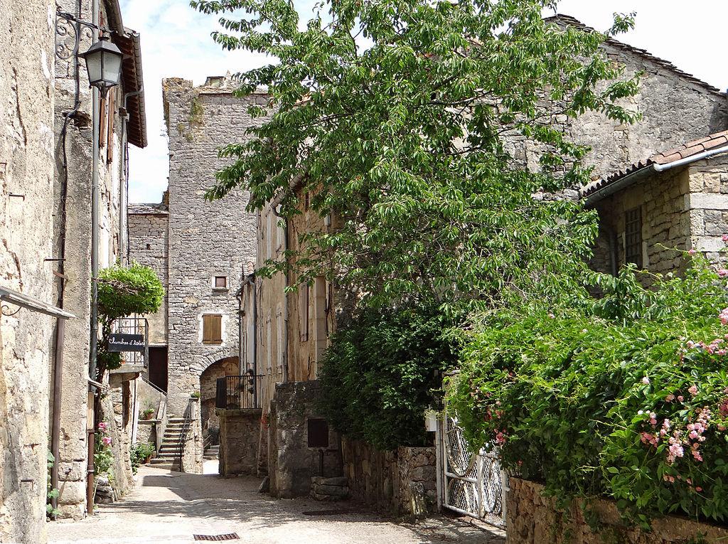 Sainte-Eulalie-de-Cernon (Aveyron) La Grand'rue