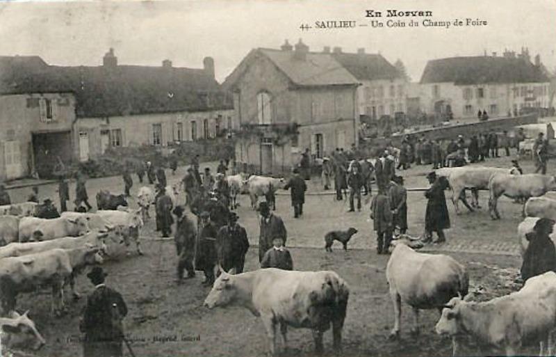 Saulieu (Côte d'Or) Le marché aux bestiaux CPA