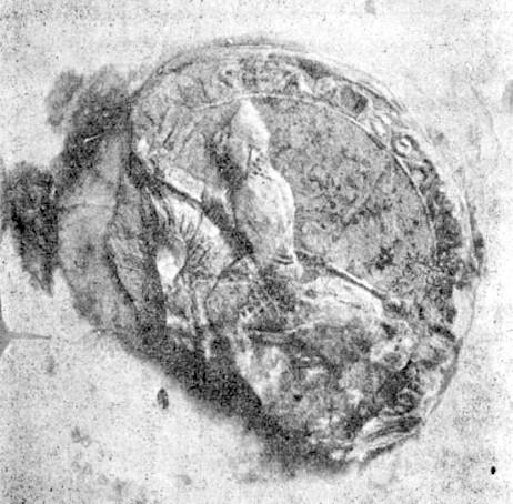 Le sceau de Foulques