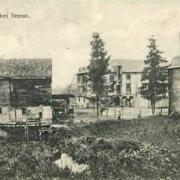 Senuc (08) CPA