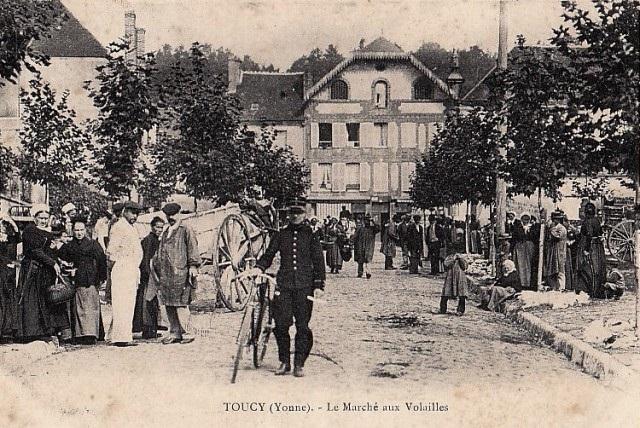 Toucy (89) Le marché aux volailles CPA