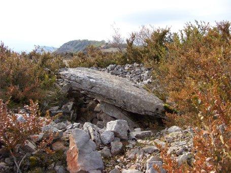 Tournemire (Aveyron) Le dolmen de Coste Plane