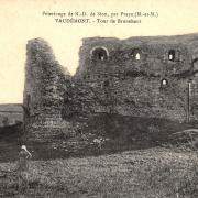 Vaudemont 54 la tour Brunehaut cpa