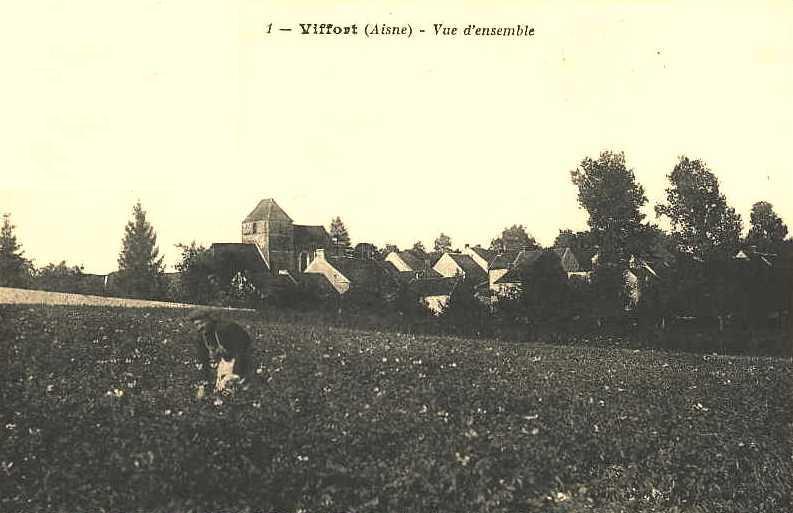 viffort (Aisne) CPA Les champs