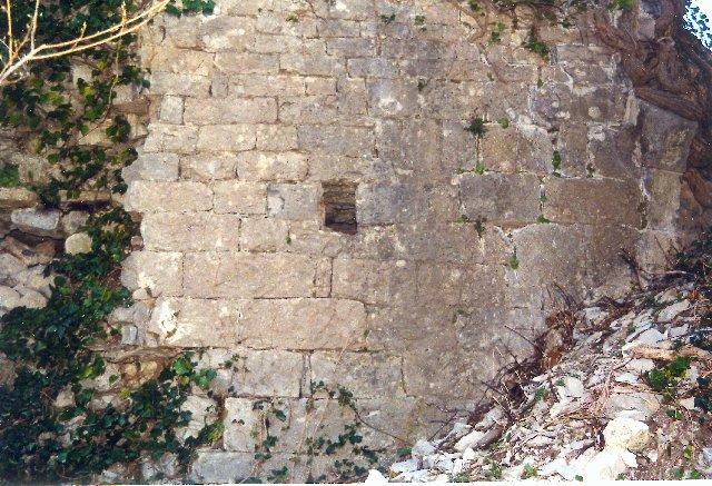Vissec (Gard) Les ruines du castellas