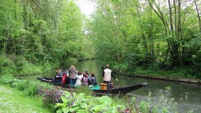 Amiens somme barque a cornet dans les hortillonages