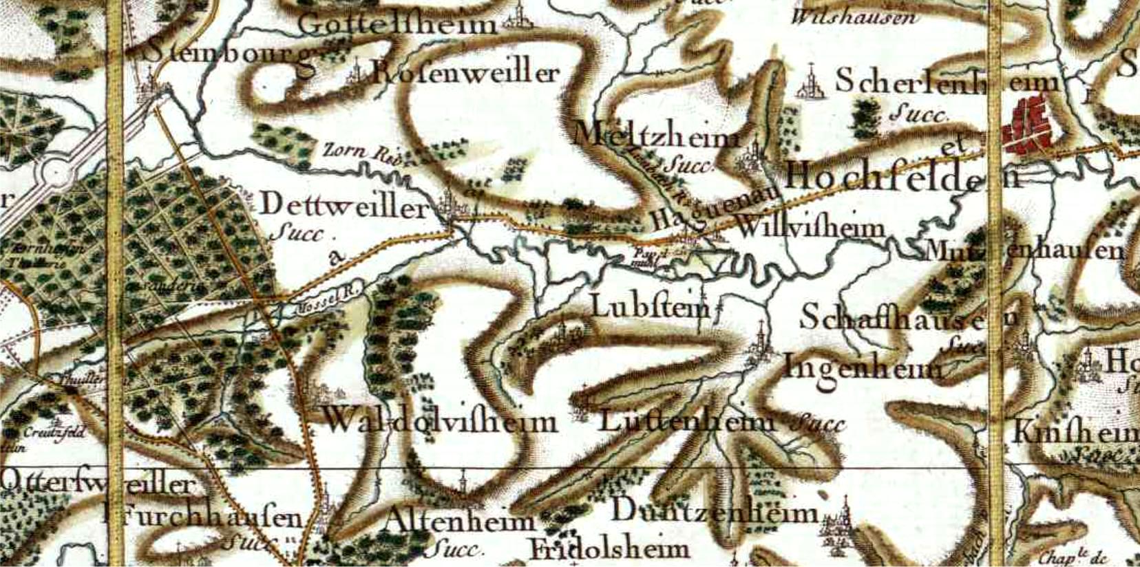 Lupstein 67 cassini